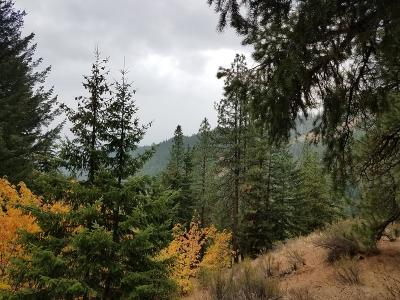 Leavenworth Residential Lots & Land For Sale: 17615 Chumstick Hwy