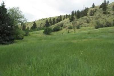 Cashmere Residential Lots & Land For Sale: Nna Olalla Canyon Rd