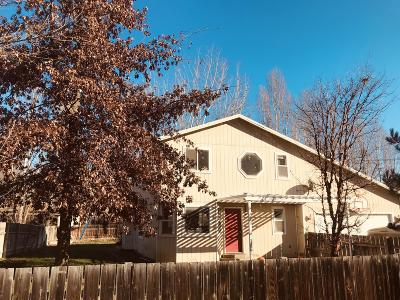 Dryden Single Family Home For Sale: 8855 Josephine Ave