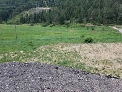 Leavenworth Residential Lots & Land For Sale: 17384 Chumstick Hwy