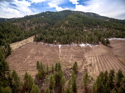 Wenatchee Residential Lots & Land For Sale: Nna Squilchuck Rd