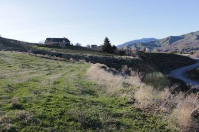 Wenatchee Residential Lots & Land For Sale: 2950 Scenic View Dr