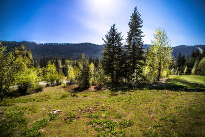 Leavenworth Residential Lots & Land For Sale: 20700 Miracle Mile