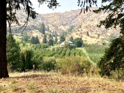 Cashmere Residential Lots & Land For Sale: 7379 Brender Canyon Rd