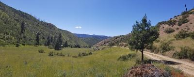 Entiat Residential Lots & Land For Sale: Nna Mud Creek Rd