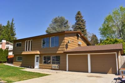 East Wenatchee, Rock Island, Orondo Single Family Home For Sale: 1305 Clements Cir