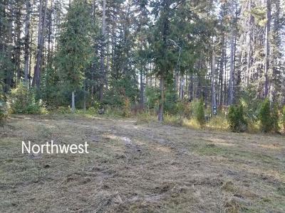 Leavenworth Residential Lots & Land For Sale: 13871 Brae Burn Rd