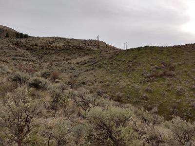 Wenatchee Residential Lots & Land For Sale: Nna Circle St