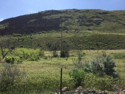 Malaga Residential Lots & Land For Sale: Nna Colockum Rd