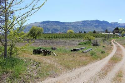 Rock Island WA Residential Lots & Land For Sale: $550,000