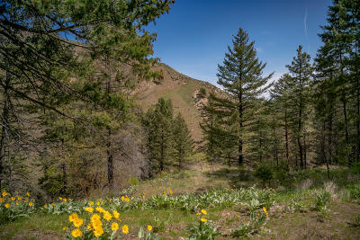 Wenatchee Residential Lots & Land For Sale: Nna Number 2 Canyon