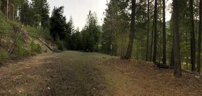 Entiat Residential Lots & Land For Sale: Nna Lot 1 Entiat River Rd