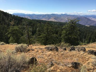 East Wenatchee Residential Lots & Land For Sale: 421 Hummingbird Rd