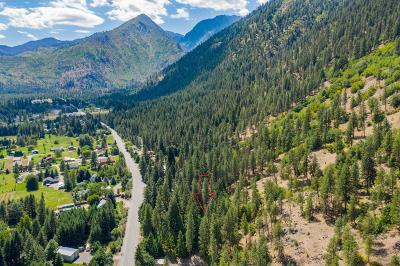 Leavenworth Residential Lots & Land For Sale: Nna Icicle Rd
