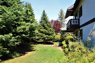 Condo/Townhouse Sold: 110 Icicle Rd #A