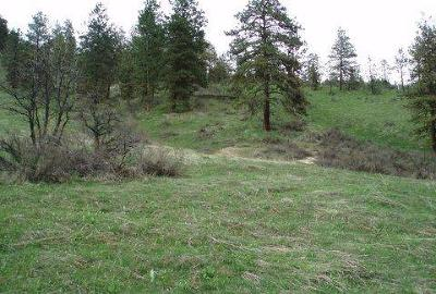 Cashmere Residential Lots & Land For Sale: 4681 Brisky Canyon Rd