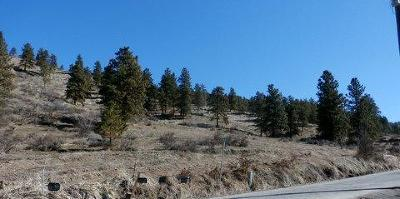 Cashmere Residential Lots & Land For Sale: 4737 Brisky Canyon Rd