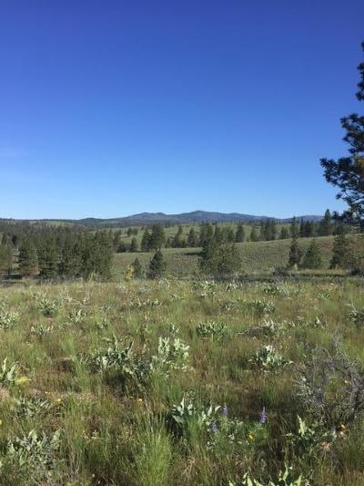 Chelan Residential Lots & Land For Sale: Union Valley Rd