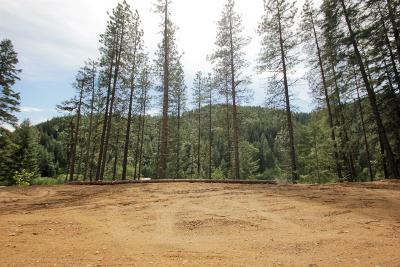 Residential Lots & Land For Sale: 16735 Chumstick Hwy