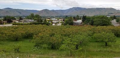 East Wenatchee Residential Lots & Land For Sale: Nna NW Cascade Ave