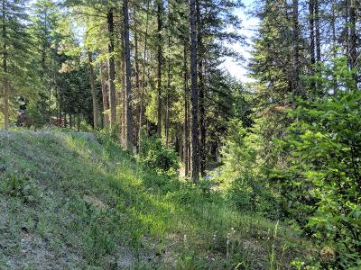 Leavenworth Residential Lots & Land For Sale: 25505 Riata St