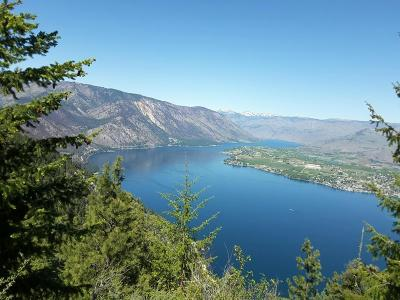 Chelan Residential Lots & Land For Sale: Nna Navarre Coulee Rd