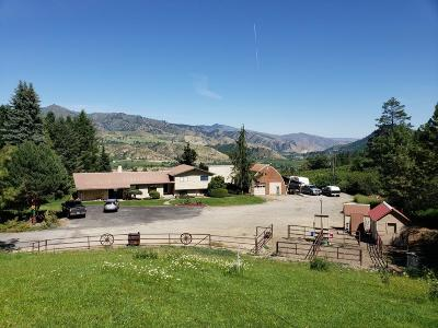 Dryden Single Family Home Active - Contingent: 9073 Deadman Hill Rd