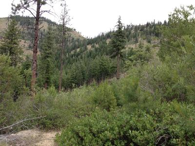 Entiat Residential Lots & Land For Sale: Tyee View Entiat River Rd