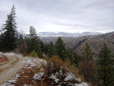 Residential Lots & Land Sold: Nna Entiat River Rd