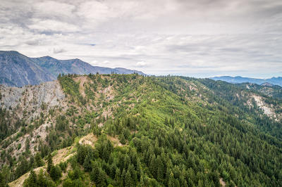 Leavenworth WA Residential Lots & Land For Sale: $549,000