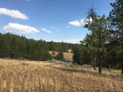 East Wenatchee Residential Lots & Land For Sale: 204 Sunset Way