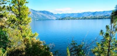 Chelan Residential Lots & Land For Sale: 6170 S Lakeshore Rd