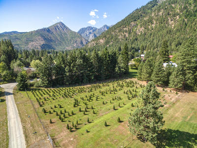 Residential Lots & Land For Sale: Nna Prowell St