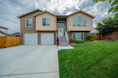 East Wenatchee Single Family Home For Sale: 317 S Jarvis Ave