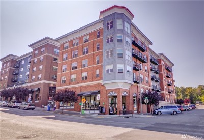 Condo/Townhouse Sold: 910 Harris Ave #205