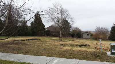 Lynden Residential Lots & Land For Sale: 111 Terrace Dr