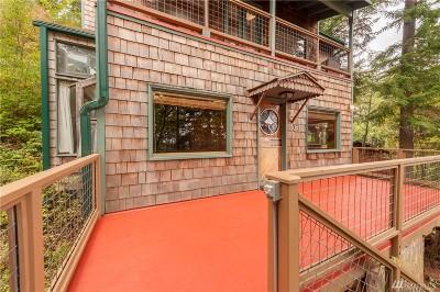 Lummi Island Single Family Home For Sale: 1237 Island Dr
