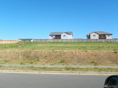 Montesano Residential Lots & Land For Sale: 100 Meadow Lp