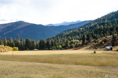 Methow, Carlton Single Family Home For Sale: 302 Smith Canyon Rd