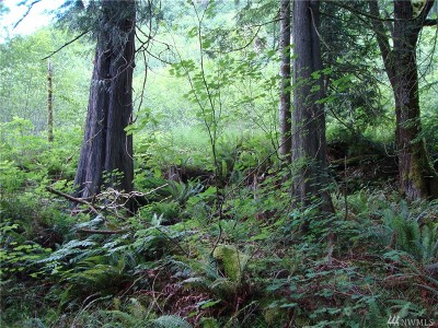 Enumclaw Residential Lots & Land For Sale: E Lake Walker Dr