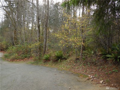 Whatcom County Residential Lots & Land For Sale: 4202 Alice St