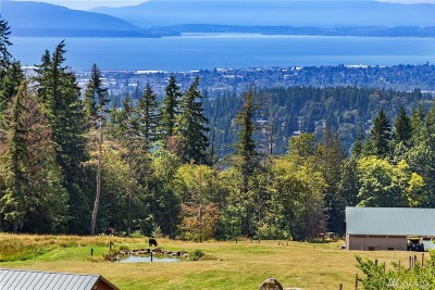 Bellingham Single Family Home For Sale: 112016 Undisclosed