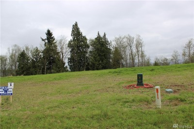 Residential Lots & Land For Sale: 39 McDonald Creek Lane