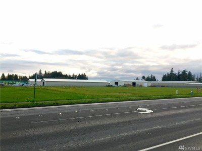 Lynden Residential Lots & Land For Sale: 8391 Guide Meridian Rd