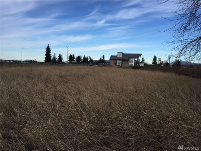 Skagit County Residential Lots & Land For Sale: Nhn Old Highway 99 N
