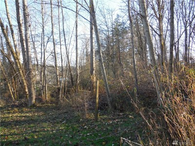 Whatcom County Residential Lots & Land For Sale: 4206 Alice St