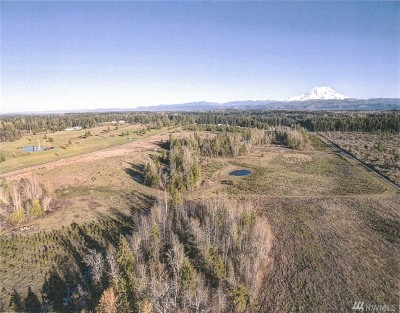 Eatonville Residential Lots & Land For Sale: 46th Ave E