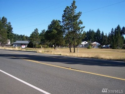 Mason County Commercial For Sale: 11750 N Us Highway 101