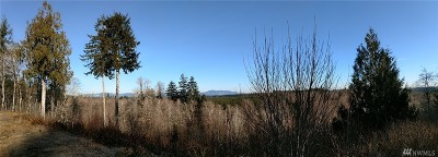 Residential Lots & Land For Sale: 521 Satsop Bridge Rd