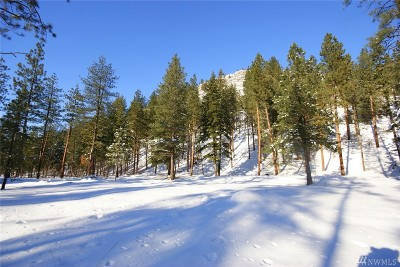 Mazama Residential Lots & Land For Sale: 36 Nella's Place